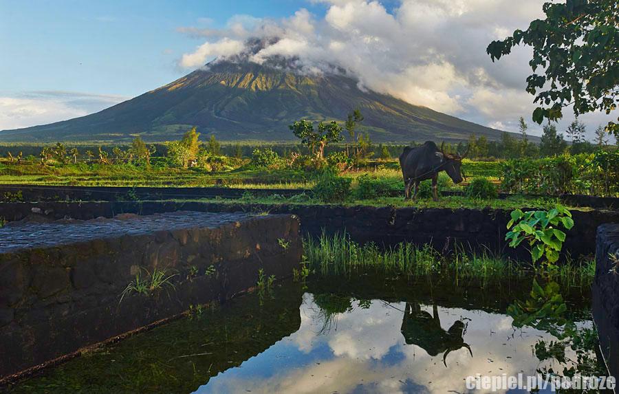 mayon9 W cieniu wielkiego wulkanu