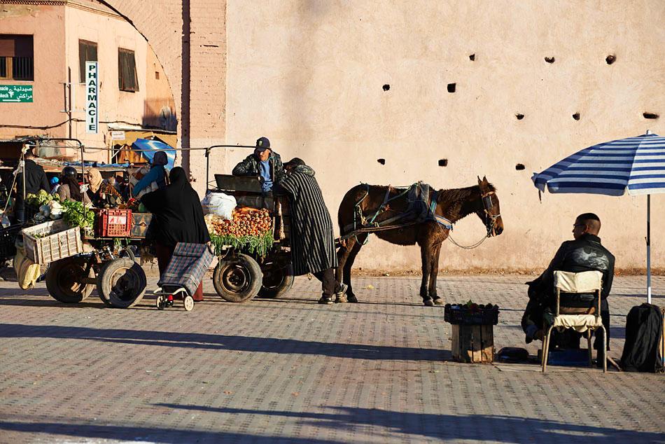 marak37 Egzotyczne Maroko