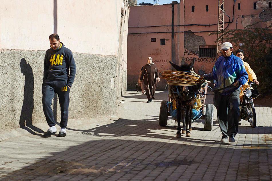marak5 Egzotyczne Maroko
