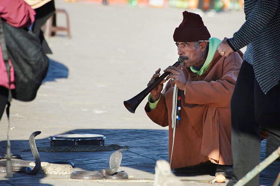 marak65 Egzotyczne Maroko
