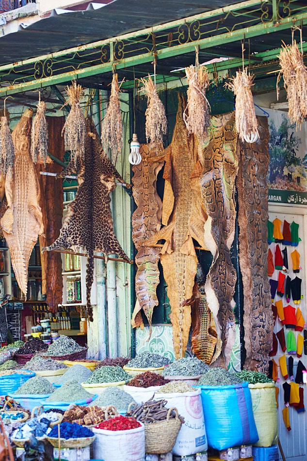 marak70 Egzotyczne Maroko