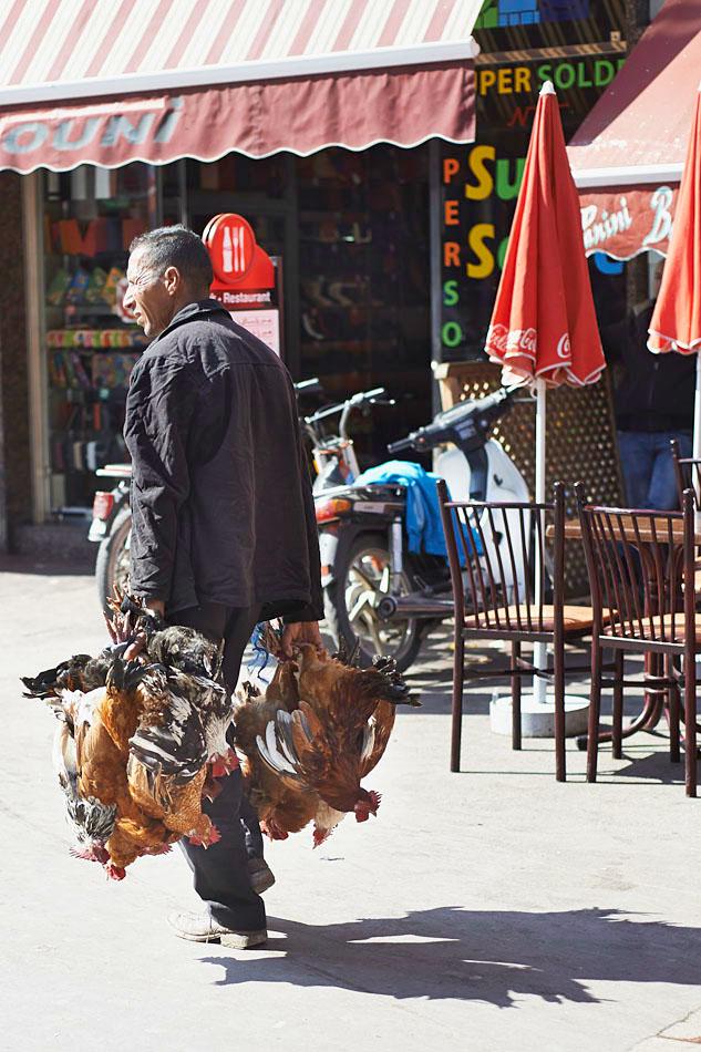marak71 Egzotyczne Maroko