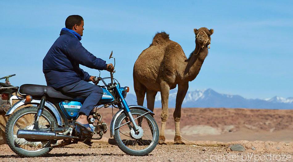 pustynia28 U wrót Sahary