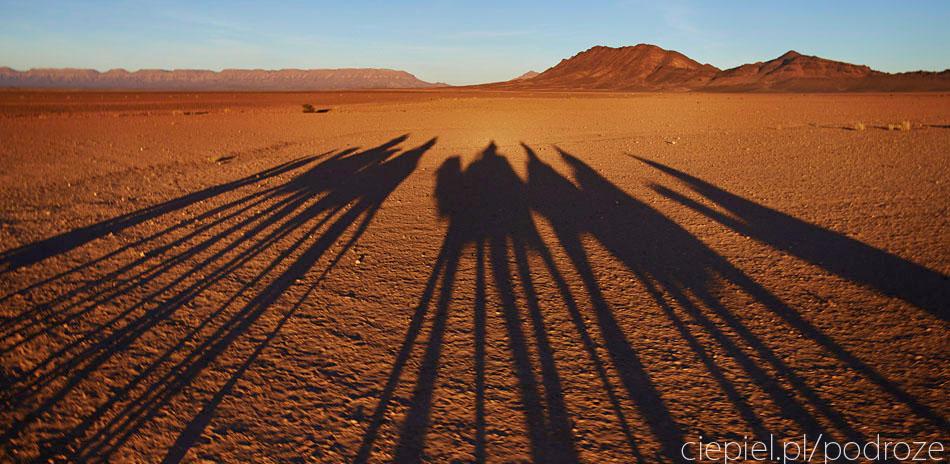 pustynia42 U wrót Sahary