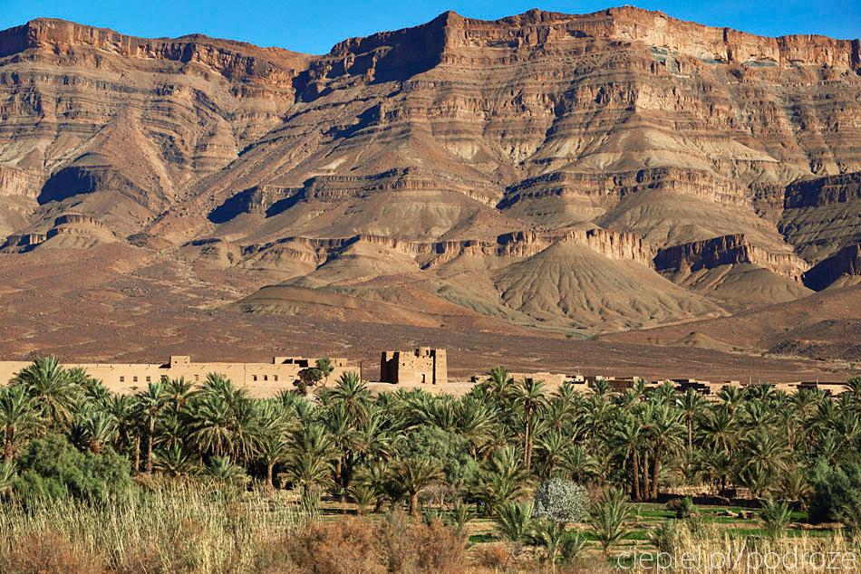 pustynia48 U wrót Sahary