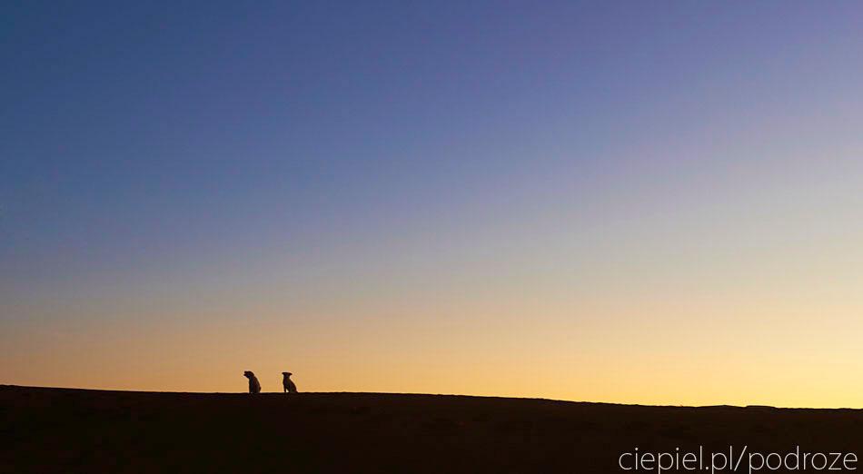 pustynia79 U wrót Sahary