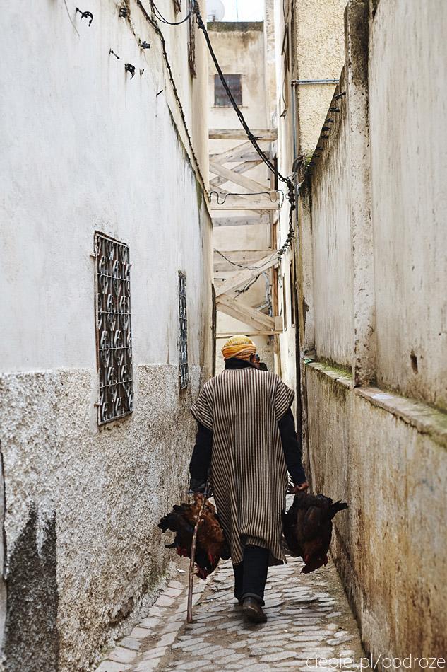 maroko fez zdjecia grzegorz ciepiel 027 Fez   mała podróż w czasie