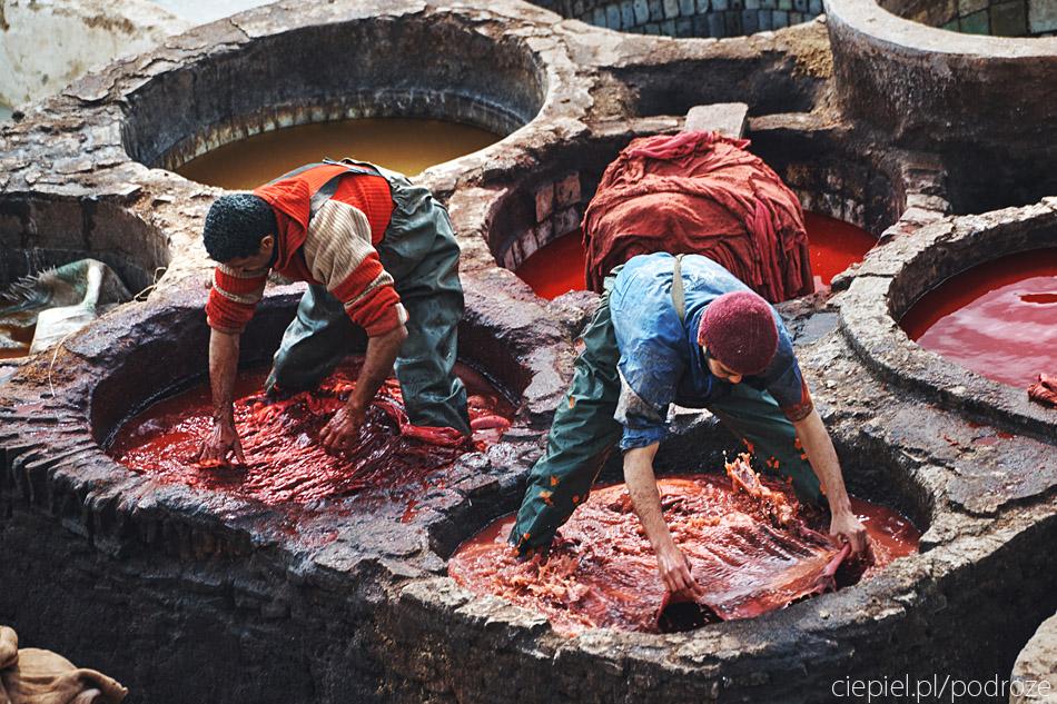 maroko fez zdjecia grzegorz ciepiel 029 Fez   mała podróż w czasie