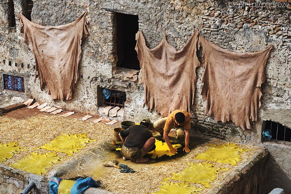 maroko fez zdjecia grzegorz ciepiel 032 Fez   mała podróż w czasie
