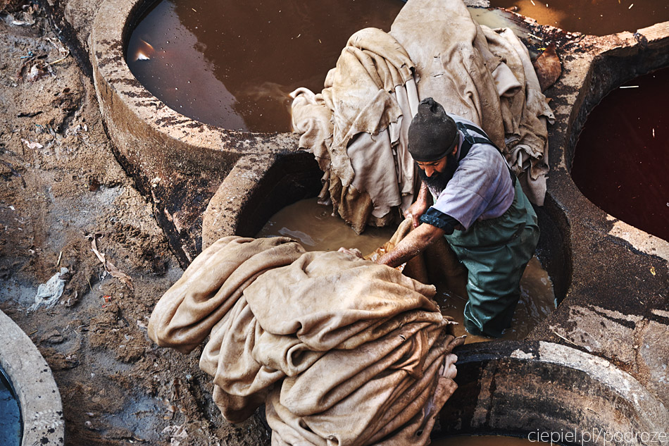 maroko fez zdjecia grzegorz ciepiel 036 Fez   mała podróż w czasie