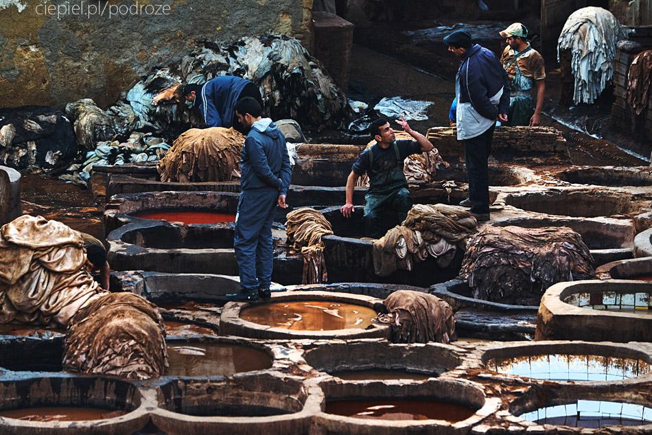 maroko fez zdjecia grzegorz ciepiel 037 Fez   mała podróż w czasie