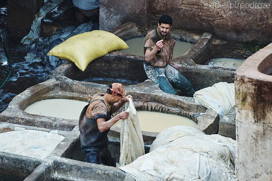 maroko fez zdjecia grzegorz ciepiel 038 Fez   mała podróż w czasie
