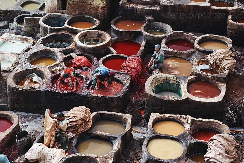 maroko fez zdjecia grzegorz ciepiel 042 Fez   mała podróż w czasie