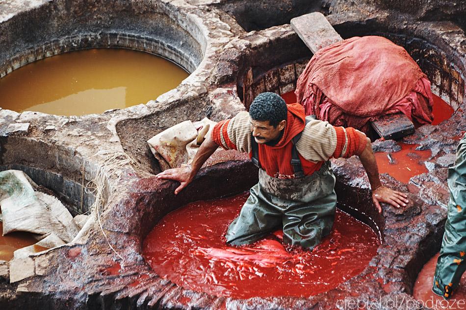 maroko fez zdjecia grzegorz ciepiel 046 Fez   mała podróż w czasie