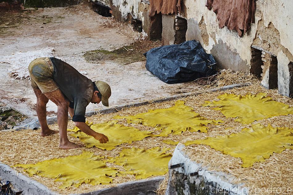 maroko fez zdjecia grzegorz ciepiel 049 Fez   mała podróż w czasie