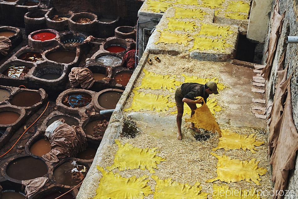 maroko fez zdjecia grzegorz ciepiel 053 Fez   mała podróż w czasie