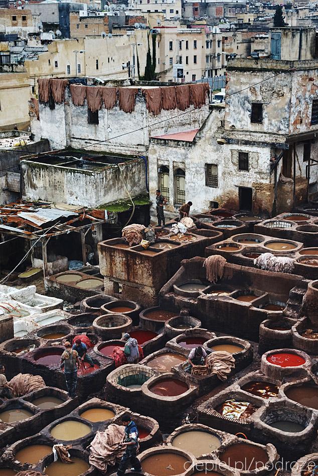 maroko fez zdjecia grzegorz ciepiel 054 Fez   mała podróż w czasie