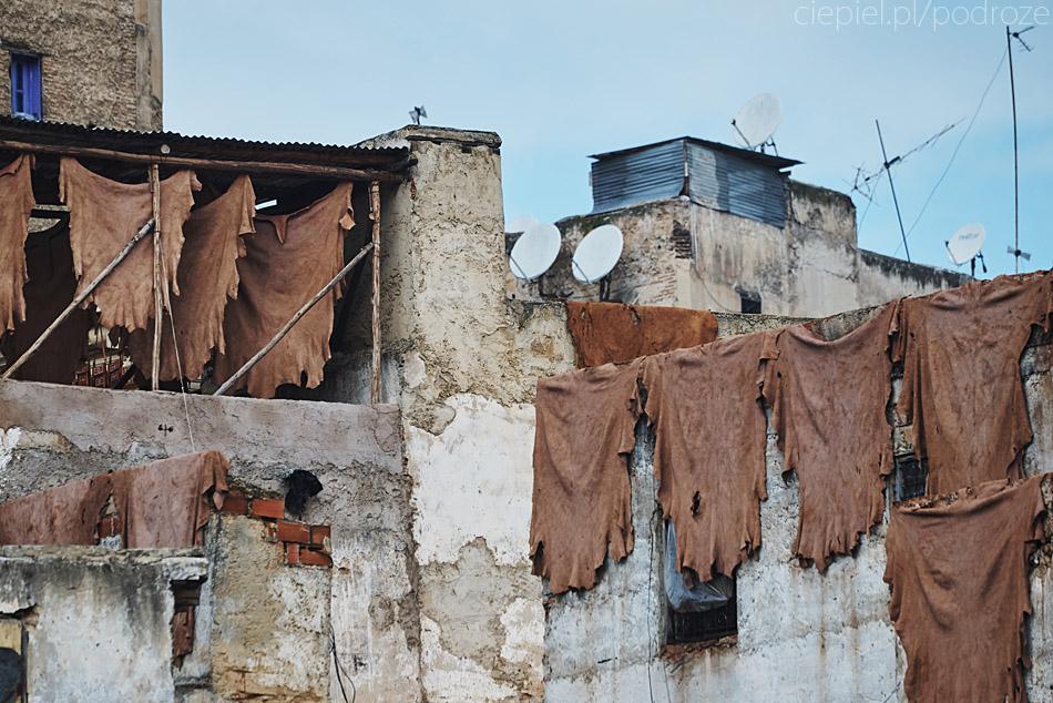 maroko fez zdjecia grzegorz ciepiel 055 Fez   mała podróż w czasie