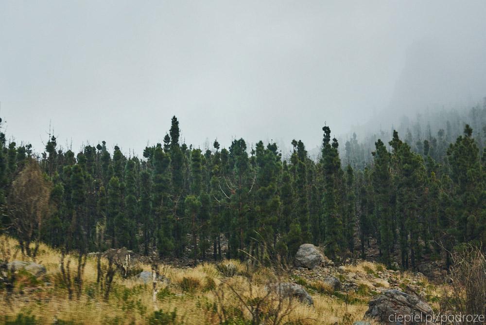 DSC 0727 Teide, bliskie spotkanie z wulkanem.