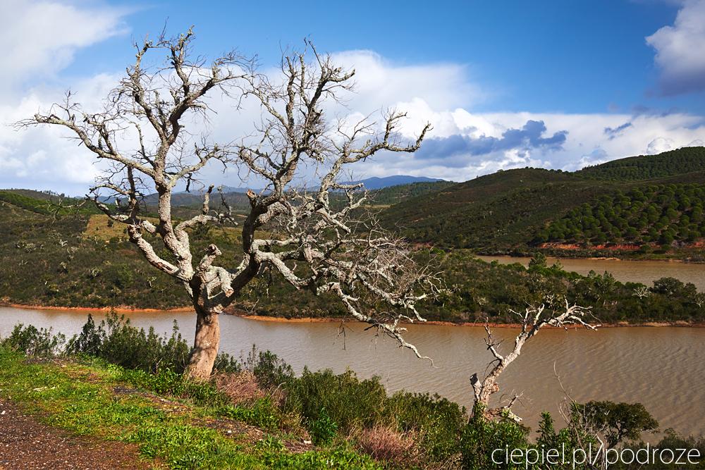 DSC 2660 Południowa Portugalia