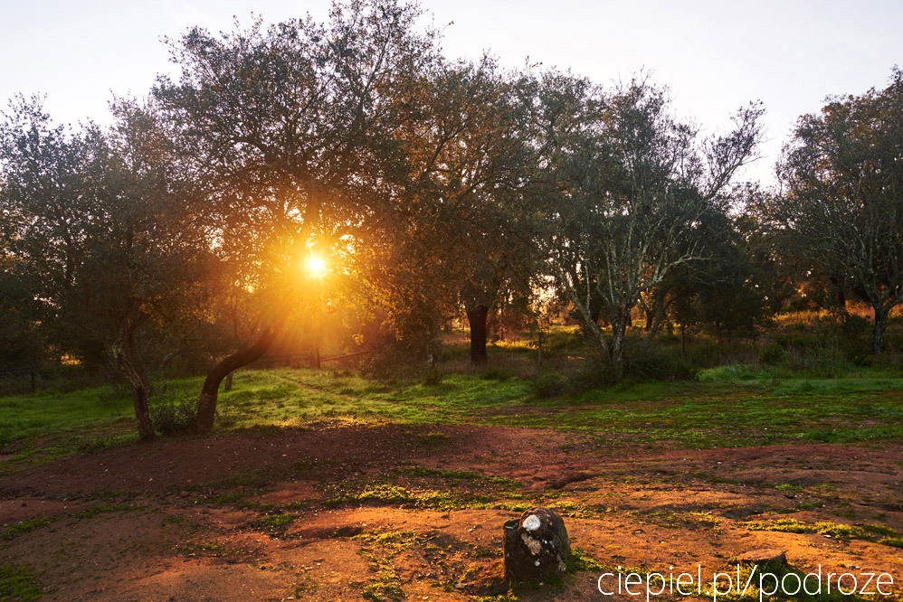 portugalia blog galeria ciepiel fotograf 078 Południowa Portugalia   dalej od oceanu