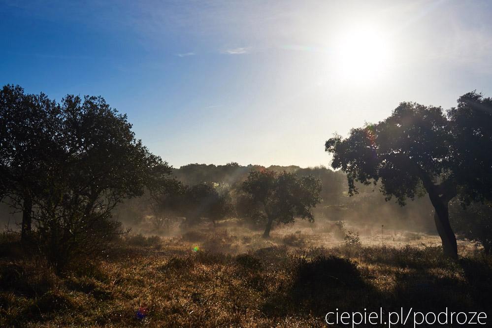 portugalia blog galeria ciepiel fotograf 088 Południowa Portugalia   dalej od oceanu
