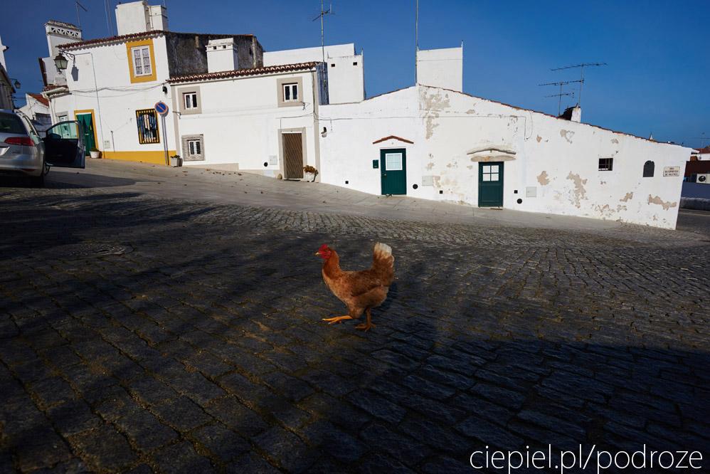 portugalia blog galeria ciepiel fotograf 096 Południowa Portugalia   dalej od oceanu