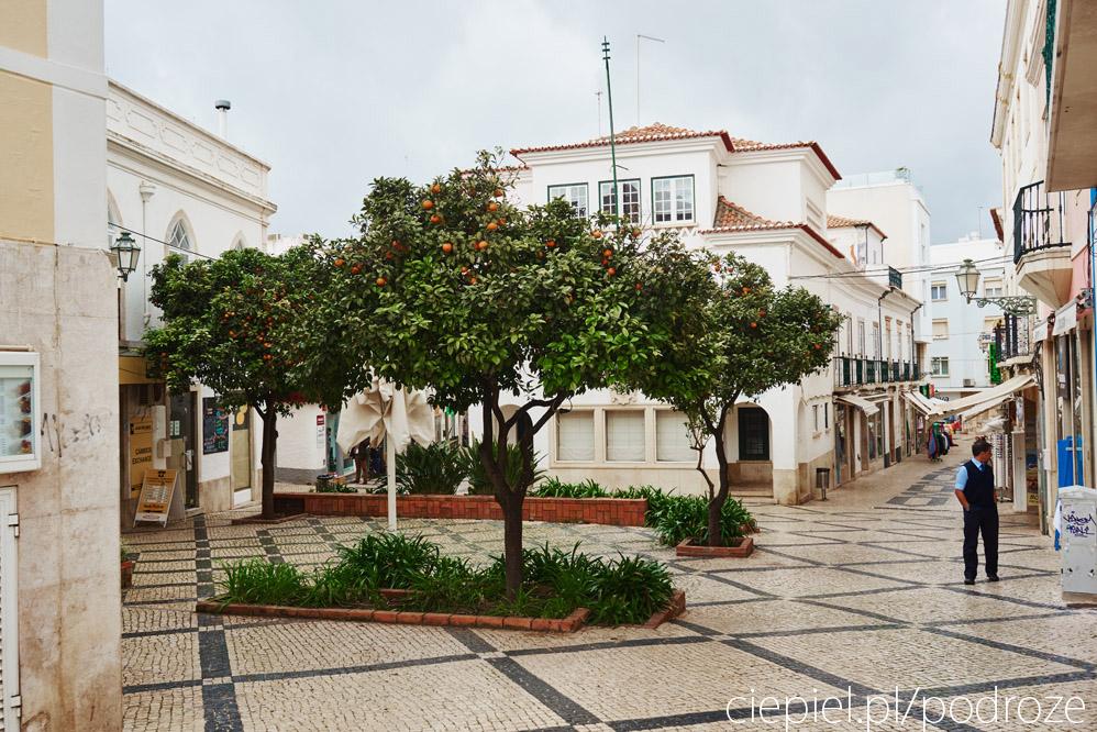 portugalia zdjecia algarve 018 Południowa Portugalia
