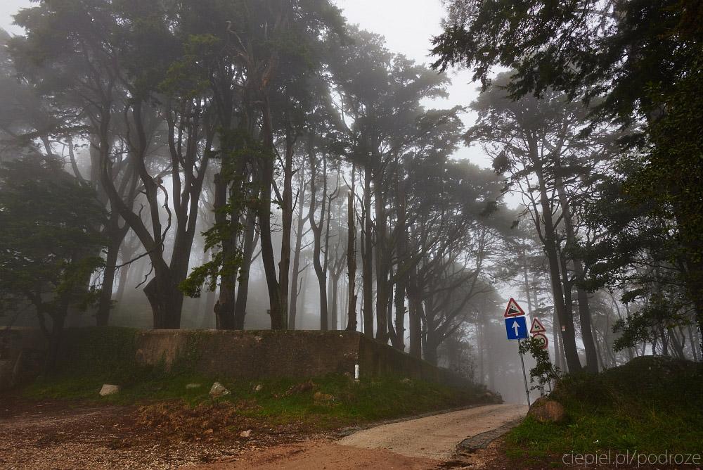 ciepiel podroze portugalia blog 041 Od Lizbony do Porto