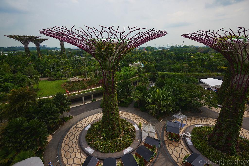 singapur co zobaczyc 0028 Singapur
