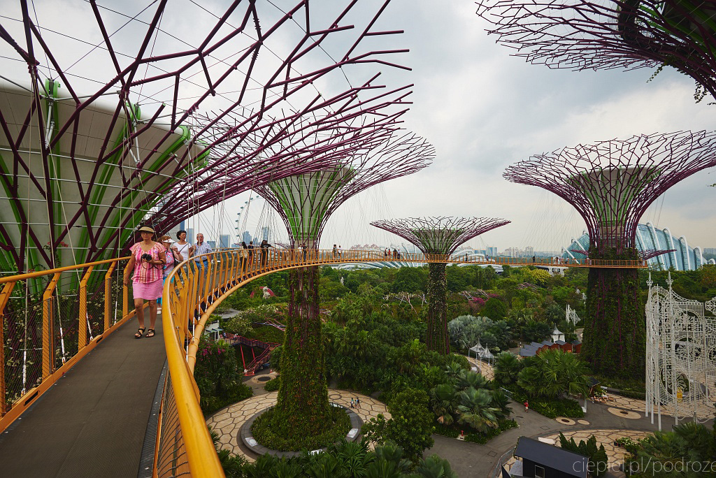 singapur co zobaczyc 0031 Singapur