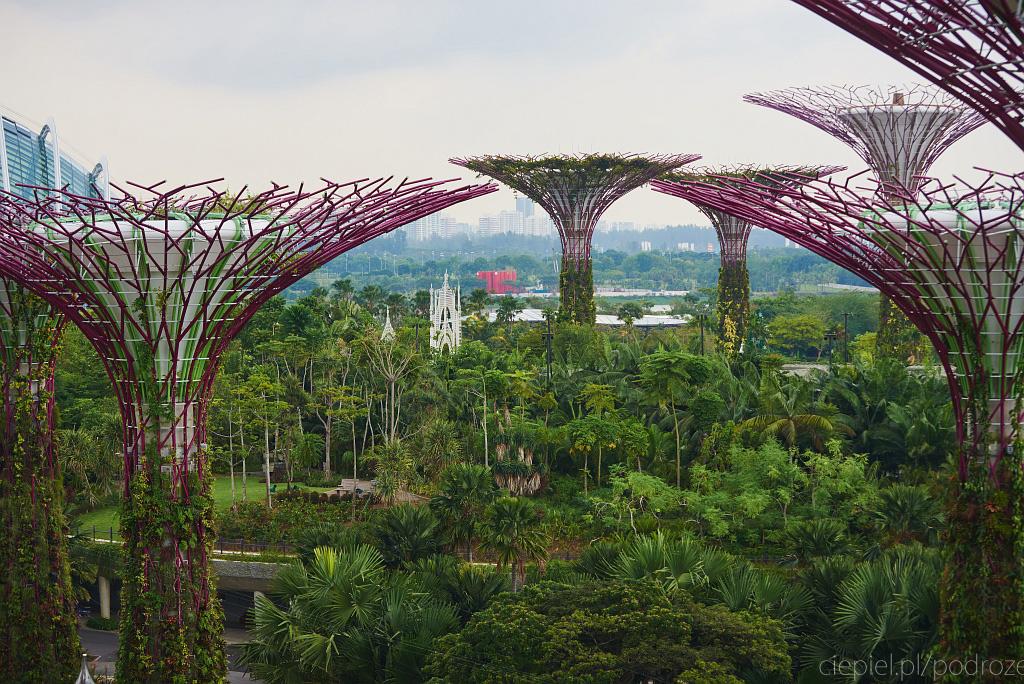 singapur co zobaczyc 0034 Singapur