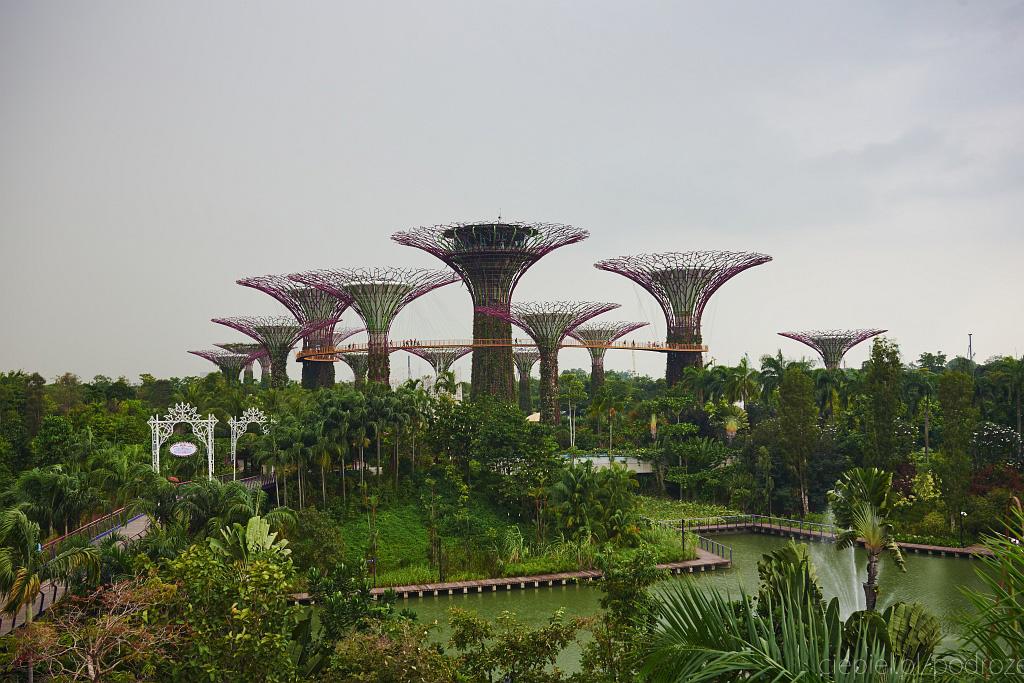 singapur co zobaczyc 0046 Singapur