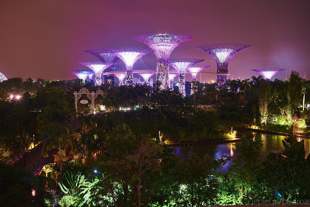 singapur co zobaczyc 0074 Singapur