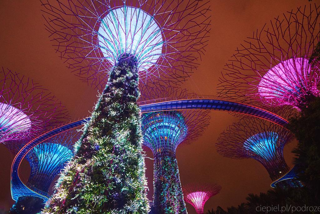 singapur co zobaczyc 0080 Singapur