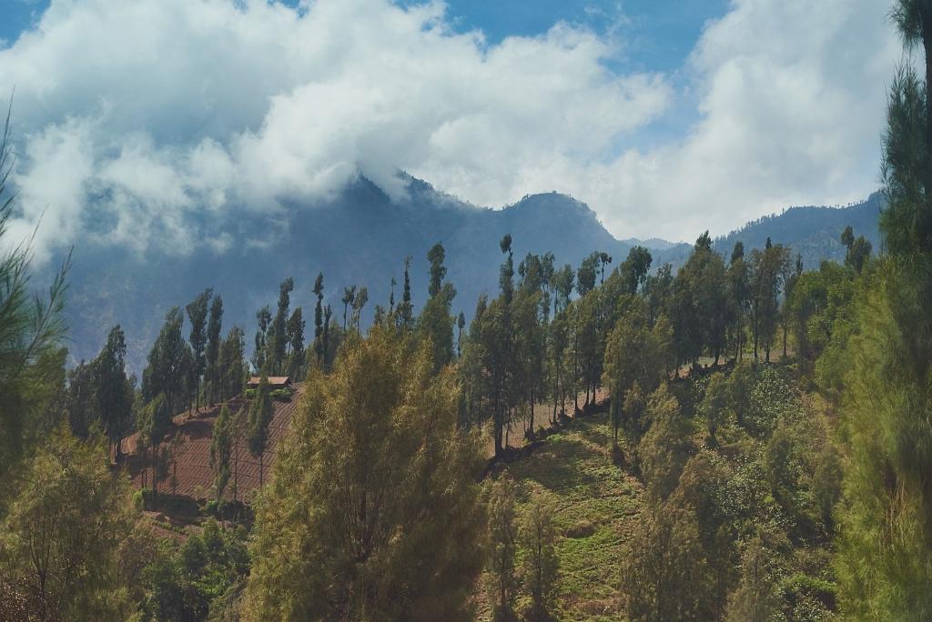indonezja 0461 W krainie wulkanów