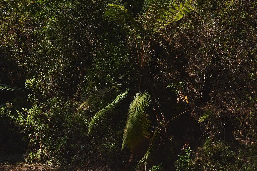indonezja 0623 W siarkowym piekle   Wulkan Ijen