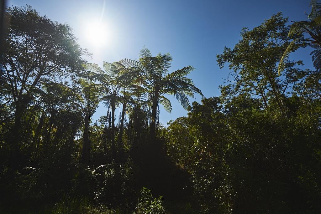 indonezja 0635 W siarkowym piekle   Wulkan Ijen