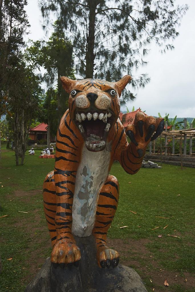 indonezja 0685 Pemuteran, cicha wioska na wyspie Bali