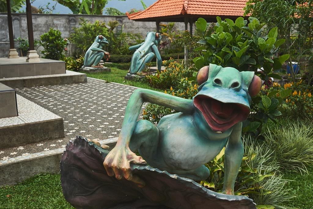 indonezja 0687 Pemuteran, cicha wioska na wyspie Bali
