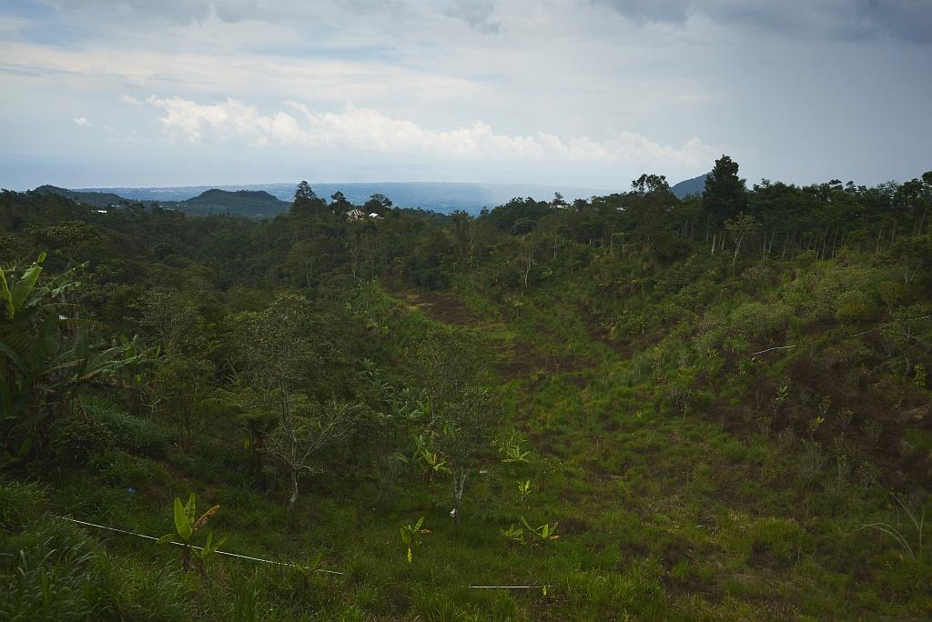 indonezja 0707 Pemuteran, cicha wioska na wyspie Bali