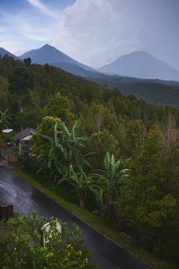 indonezja 0781 Pemuteran, cicha wioska na wyspie Bali