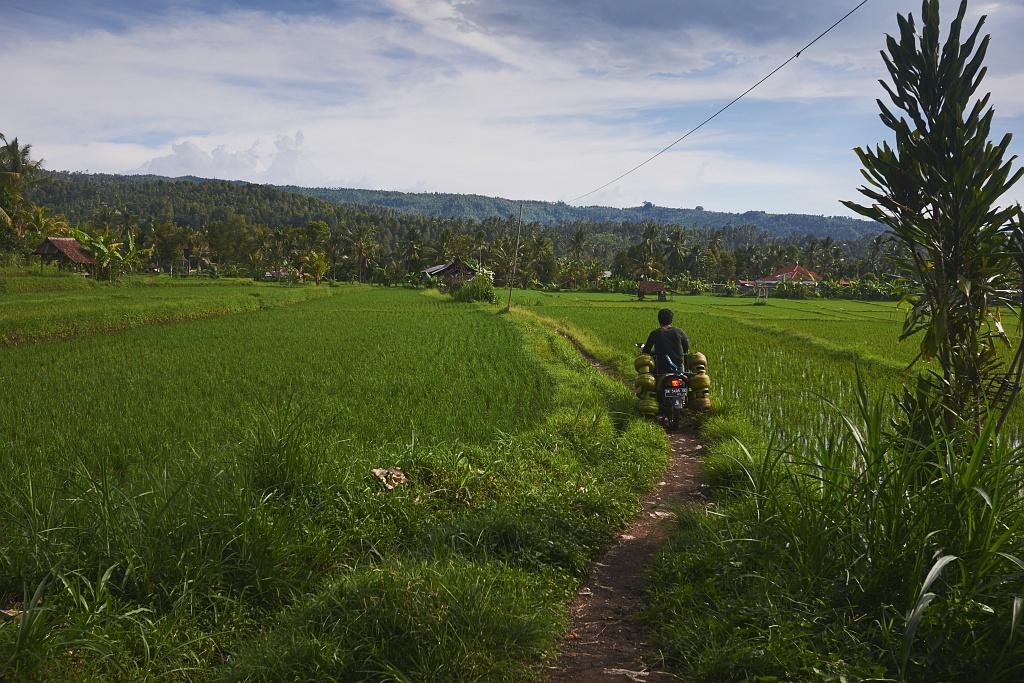 indonezja 0789 Pemuteran, cicha wioska na wyspie Bali