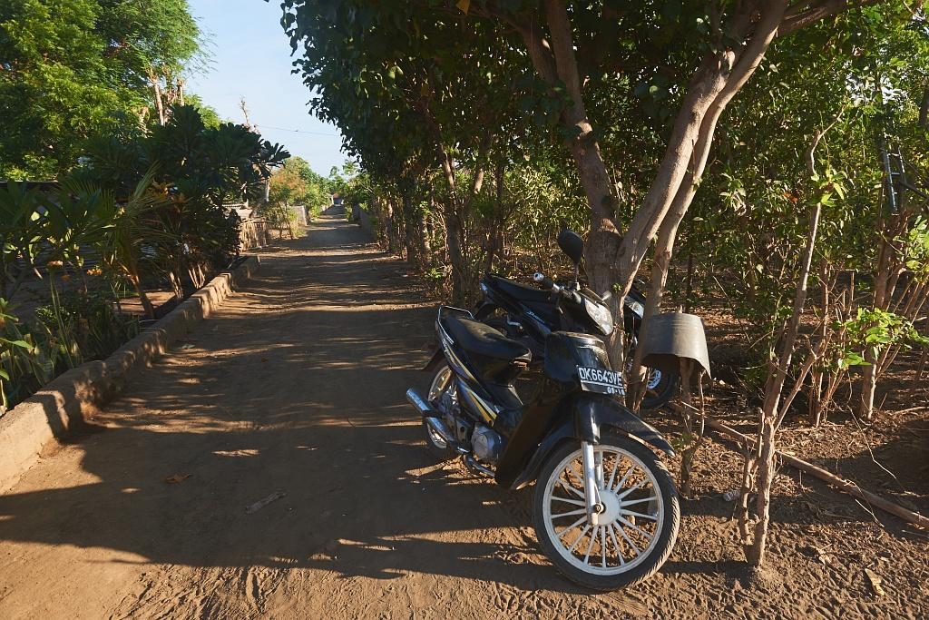 indonezja 0922 Pemuteran, cicha wioska na wyspie Bali